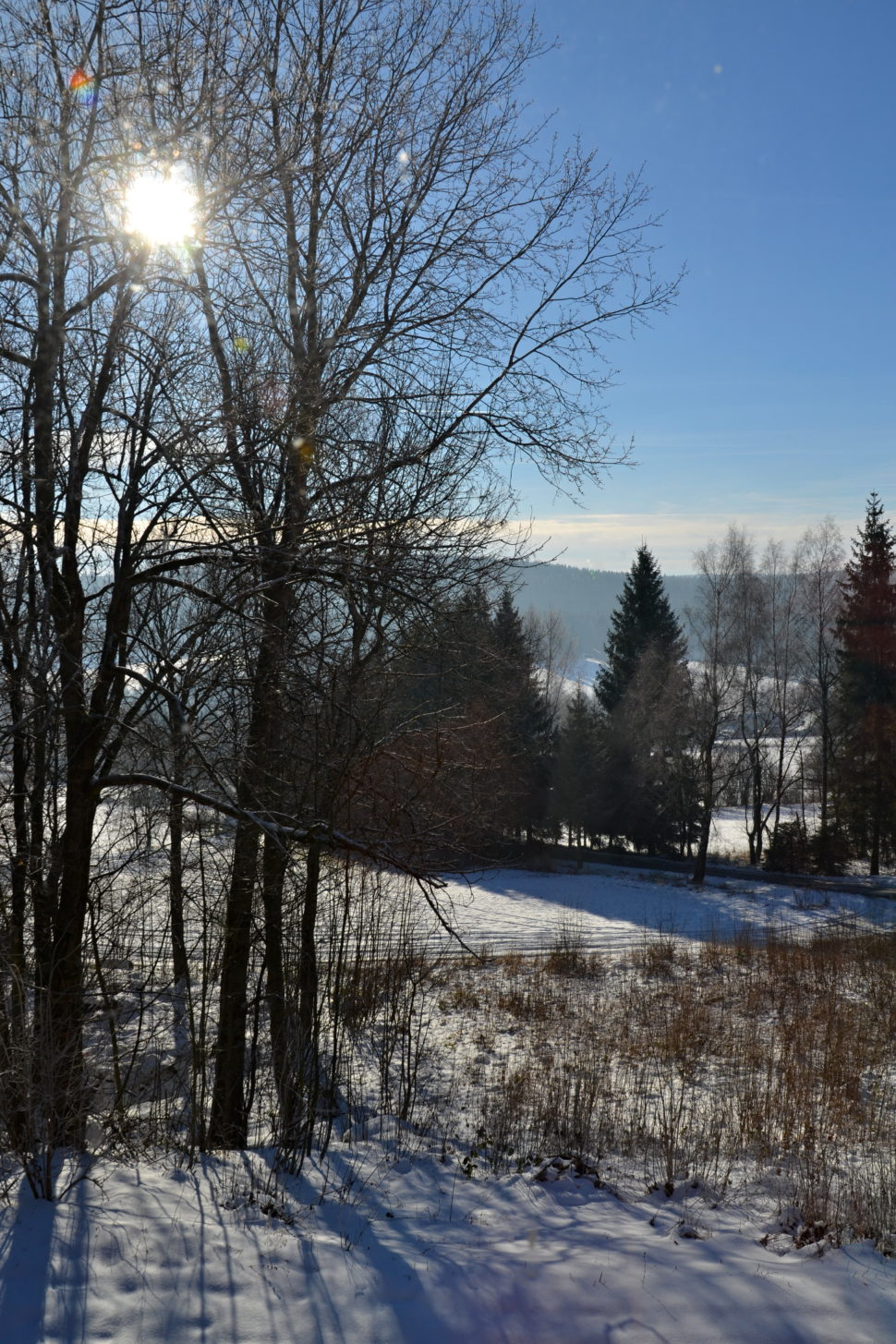 zima ve Svratce